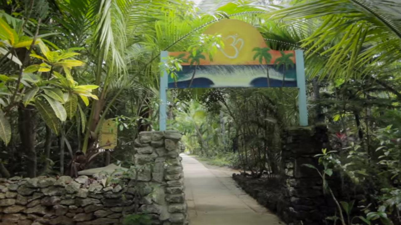 Welcome to Sivananda