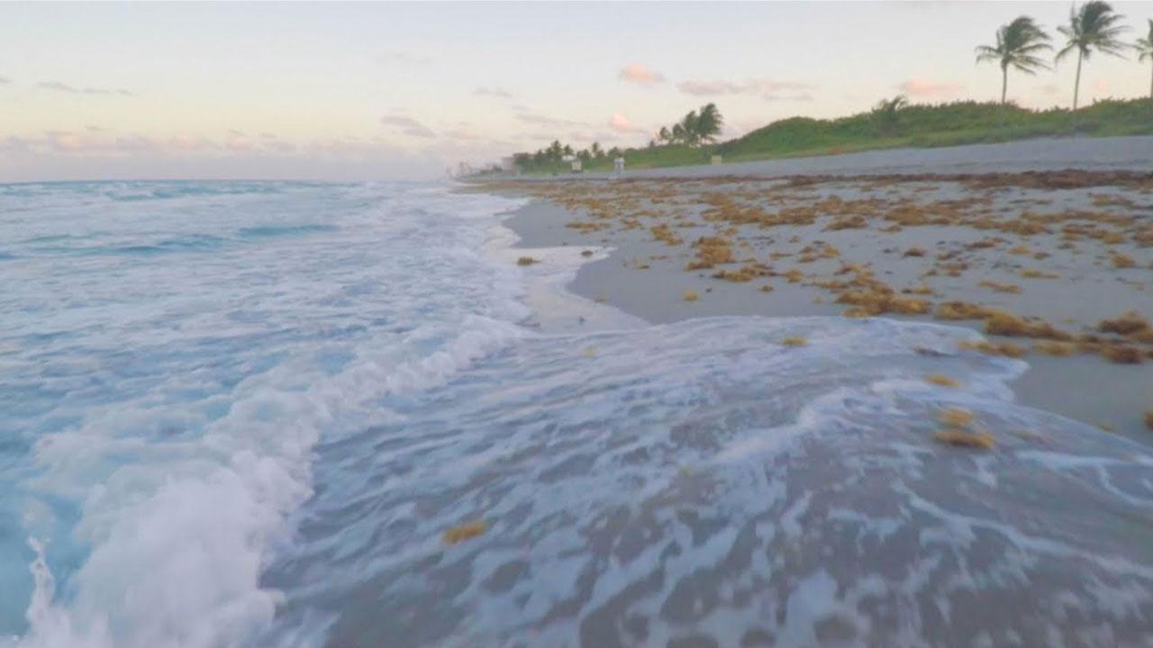 Walter Duke on Sea Level Rise